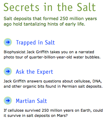 The Secret Life in Salt